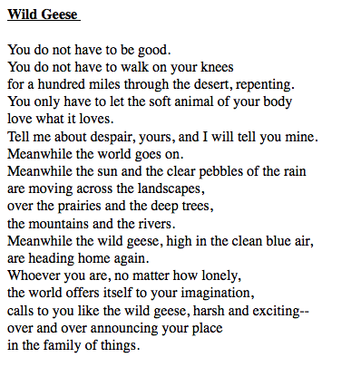 Lesbian Poems 3